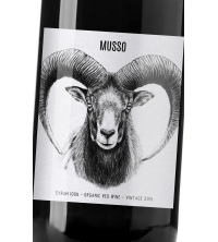 MUSSO Tinto Pinot Noir