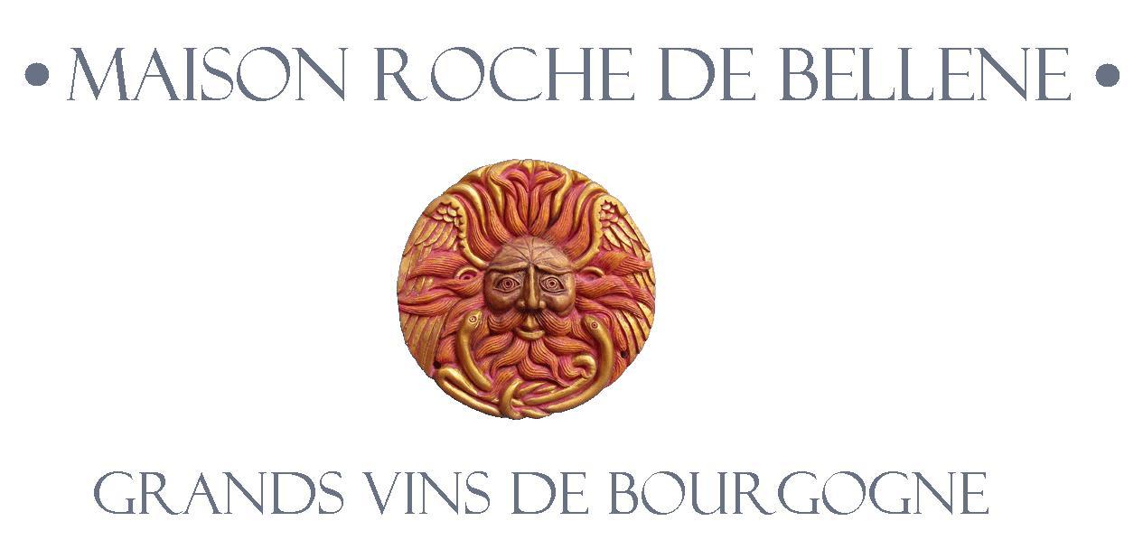 Mejor tienda de vinos de borgoña