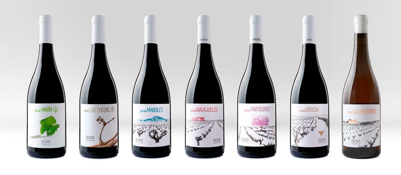 Comprar vino de Bodega Bruma del Estrecho