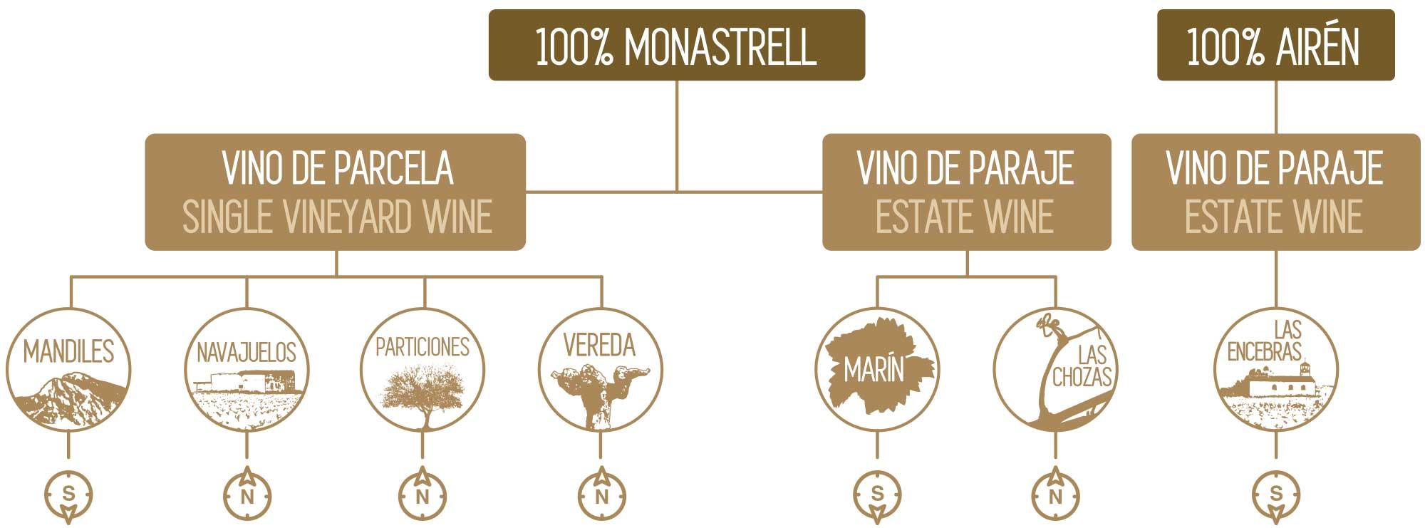 Mayor tienda online de vinos de Bodega Bruma del Estrecho
