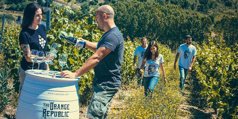 Lider en venta de vinos de Bodega Casa Rojo