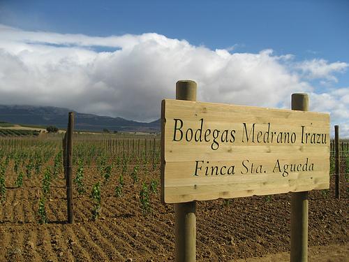 Mayor tienda online de vinos de Bodega Amador Medrano