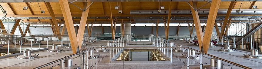 Mayor tienda online de vinos de Bodega Protos
