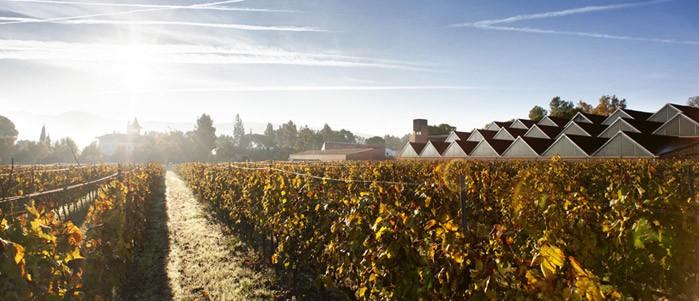 Mayor tienda online de vinos de Bodega Raventós i Blanc