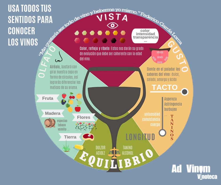 Los sentidos del vino