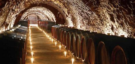 Mayor tienda online de vinos de Bodega Vega Sicilia