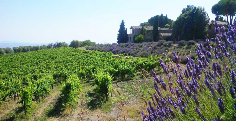 Vinos de Villa Poggio Salvi