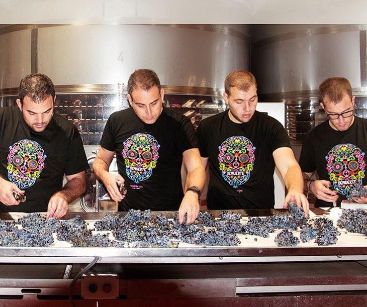 Lider en venta de vinos de Bodega Winery On