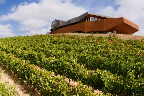 Mayor tienda online de vinos de Bodega Aroa